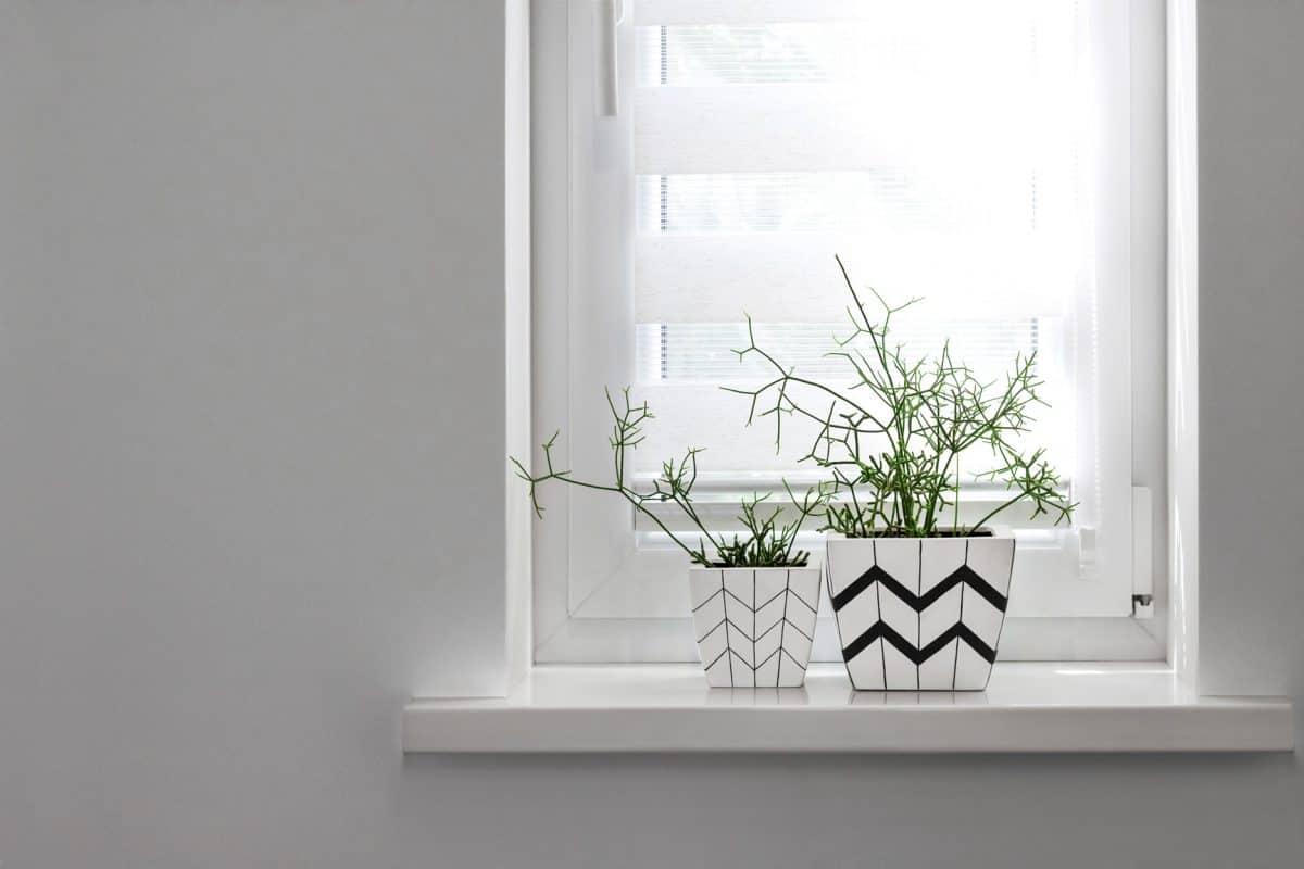 Jakie okna energooszczędne wybrać? Rodzaje i najważniejsze parametry