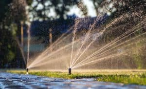Nawodnienie działki, trawnika oraz ogrodu. Rodzaje i metody systemów nawadniania