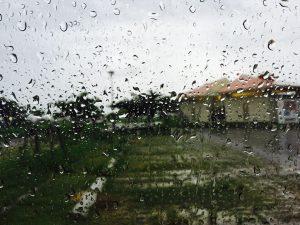 Podatek od deszczu. Czym jest i kogo obejmuje ?
